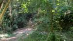 Photo 3 Terreno