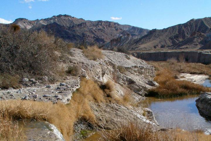 The Amargosa River winds its way through a canyon near China Ranch Date Farm on its way to Death Valley. (Henry Brean/Las Vegas Review-Journal)