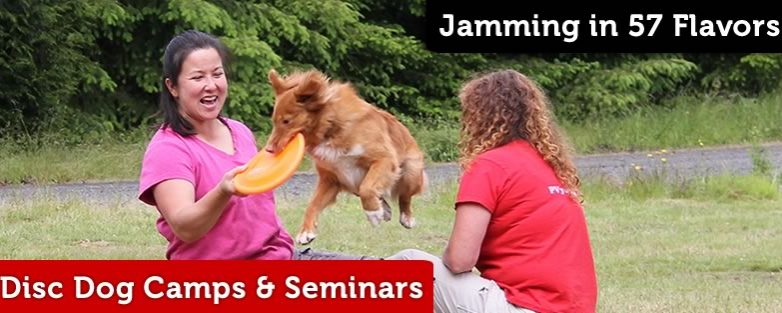 Pawsitive Vybe Disc Dog Training Menu – Jamming in 57 Flavors