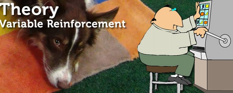 Variable Reinforcement