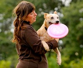 Dog Training & Canine Art in Fargo, ND