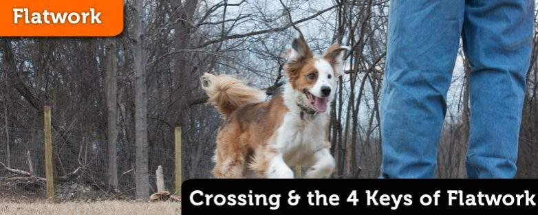 Crossing and the 4 Keys of Flatwork