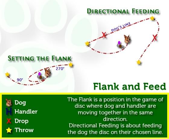 Flanking and Feeding