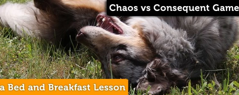 Bed and Breakfast Lesson: Chaos vs Consequent Game