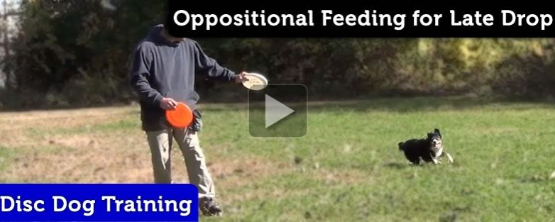 Oppositional Feeding – Fixing a Latent Drop