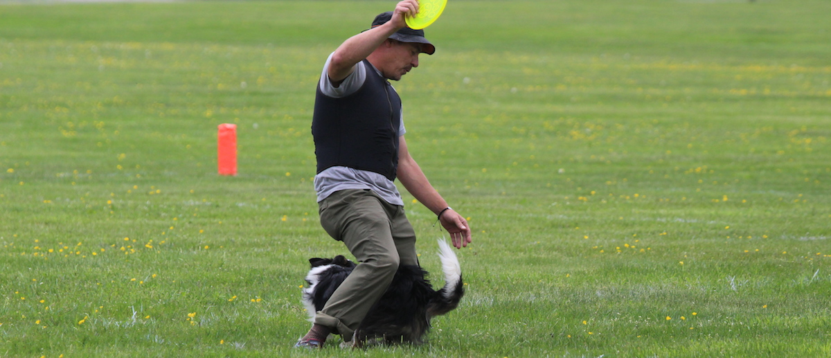 On Disc Dog Freestyle Wind Management — Purpose Driven Movement