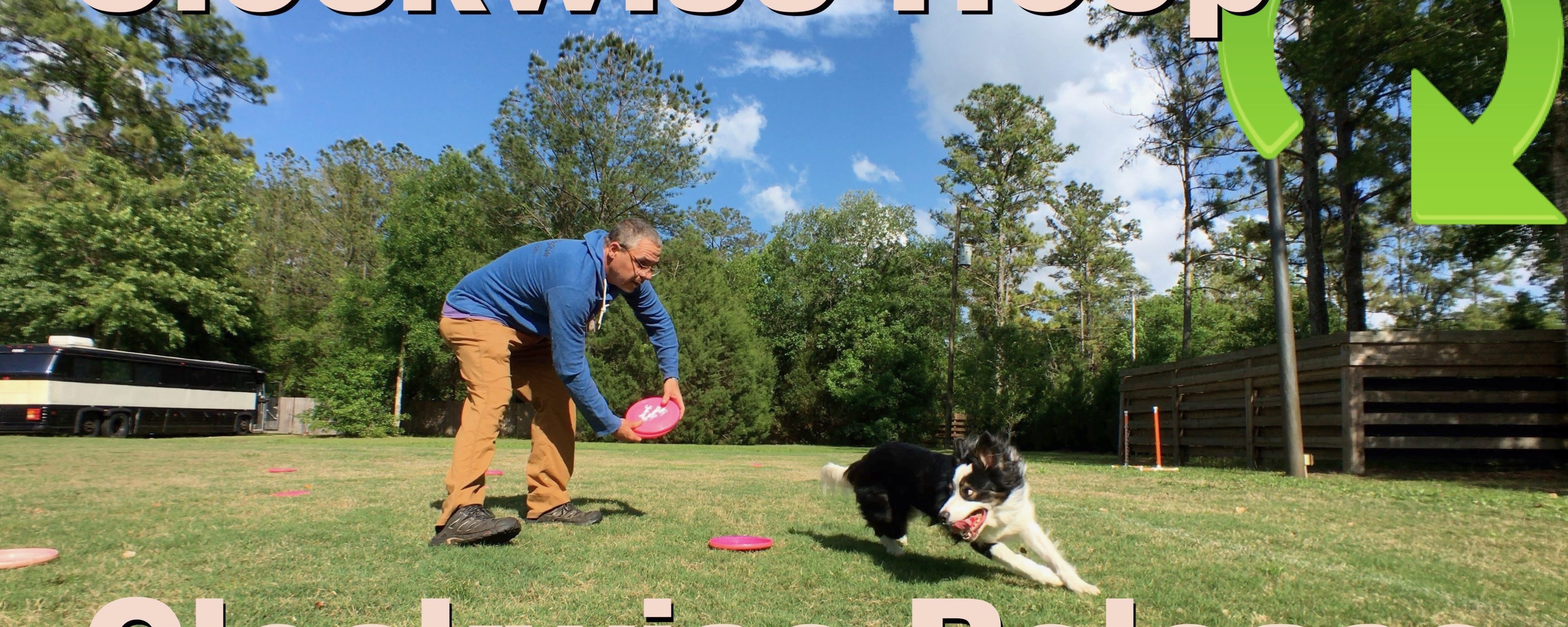 Patron's Choice: Routine Building | Disc Management for the Dog