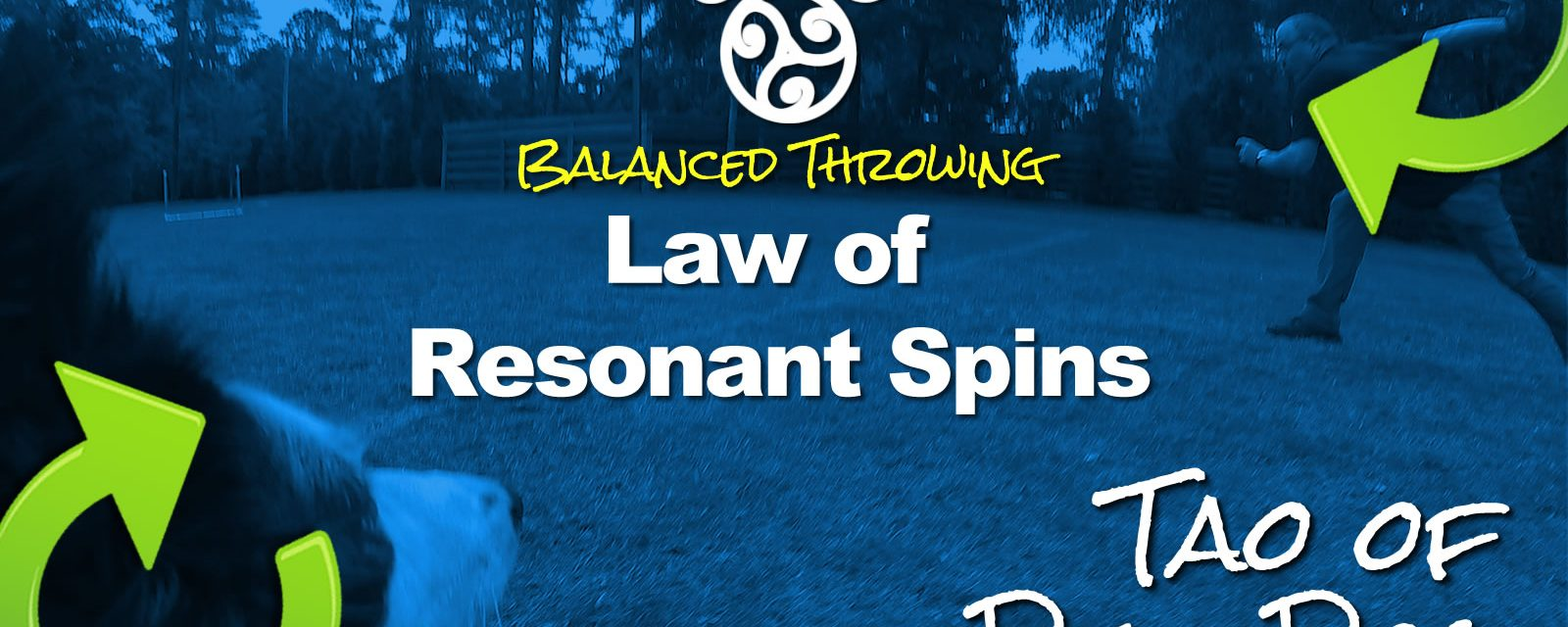 Balanced Disc Dog Throwing: Law of Resonant Spins