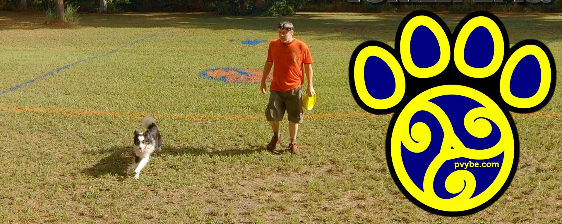 Drop vs Catch | The Best of Both Worlds for Disc Management and Game Strategies