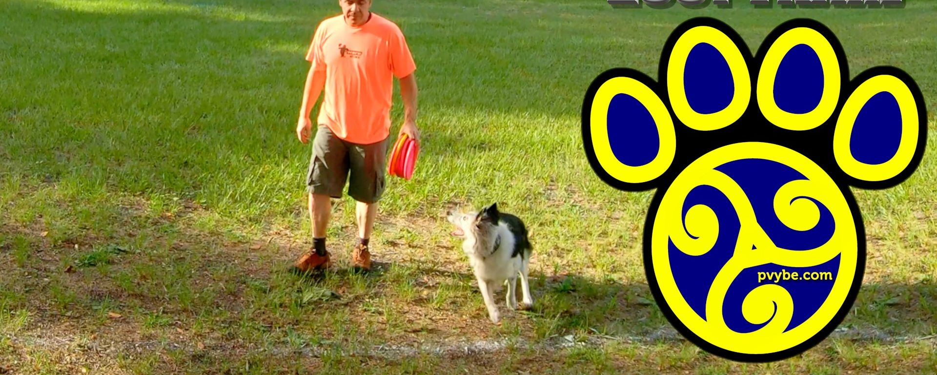 Working Drop? Drop and Toss n Fetch Don't Mix. Unless…