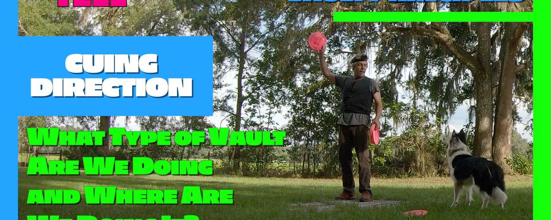 Disc Dog Vault Principles | Cuing Direction aka: Tell