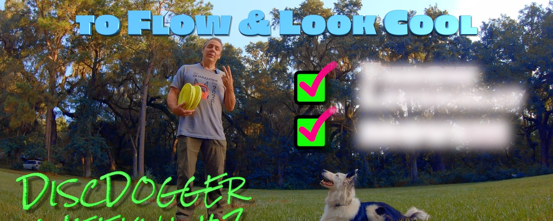2 Things You Must Do for Better Disc Dog Team Movement – A DiscDogger Weekly Sneak Peek