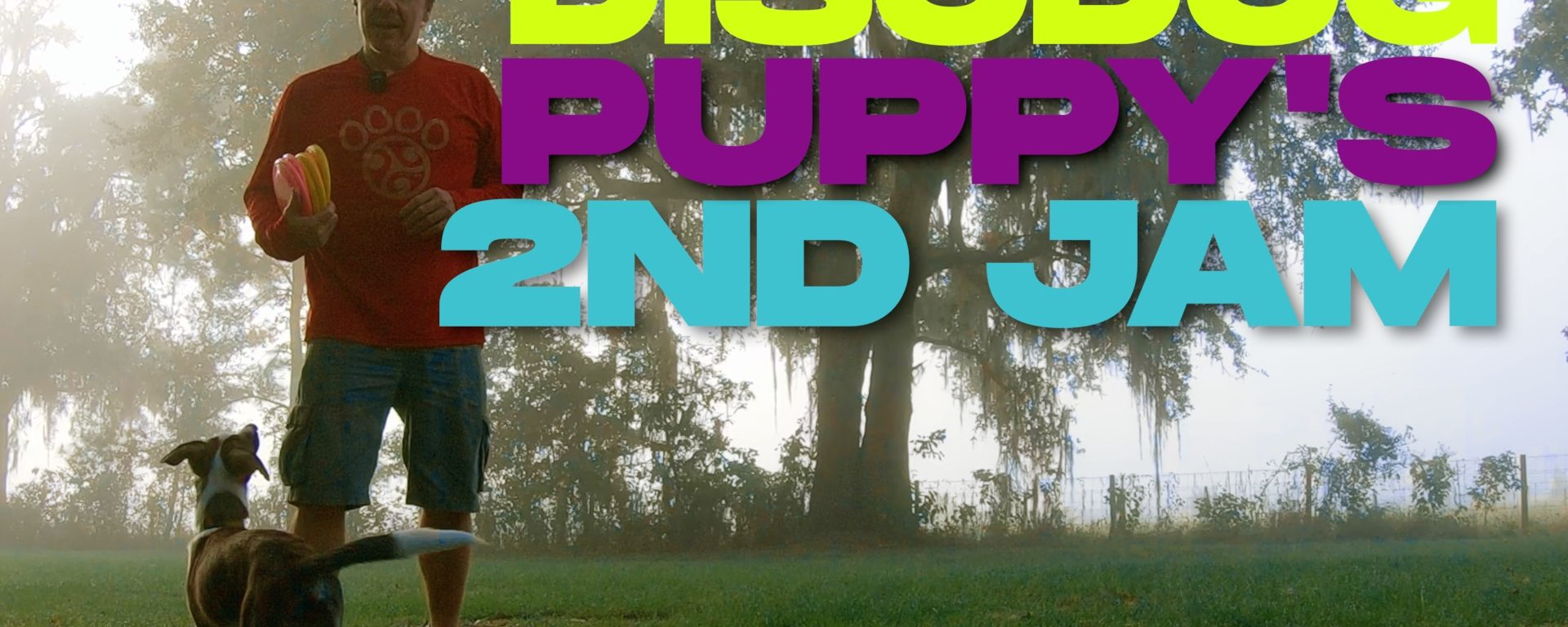 Disc Dog Team Movement Foundation | Puppy's 2nd Jam