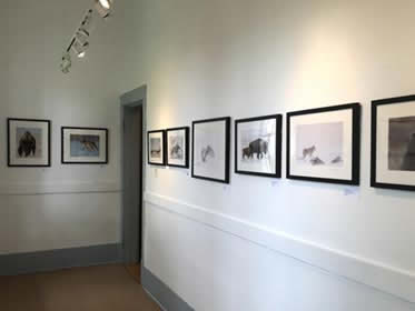 Photography Exhbition in the Cloakroom Gallery