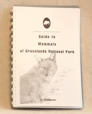 Guide to Mammals of Grasslands National Park