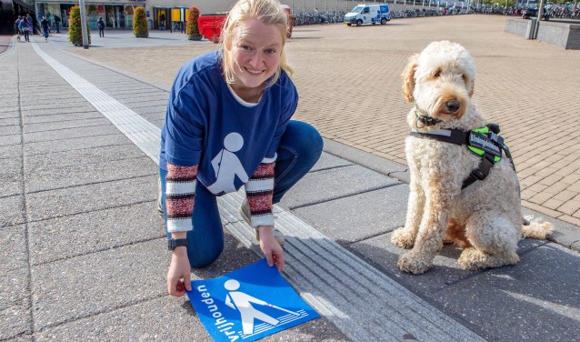 """Afbeelding van een vrouw met geleidehond die een stikker """"Houd de lijn vrij"""" plak naast een geleideliijn."""
