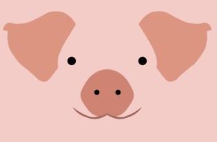 Cochon jeux vidéo