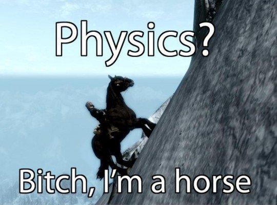 Skyrim horse meme.pg