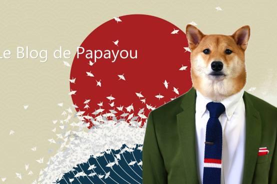 le-blog-de-papayou
