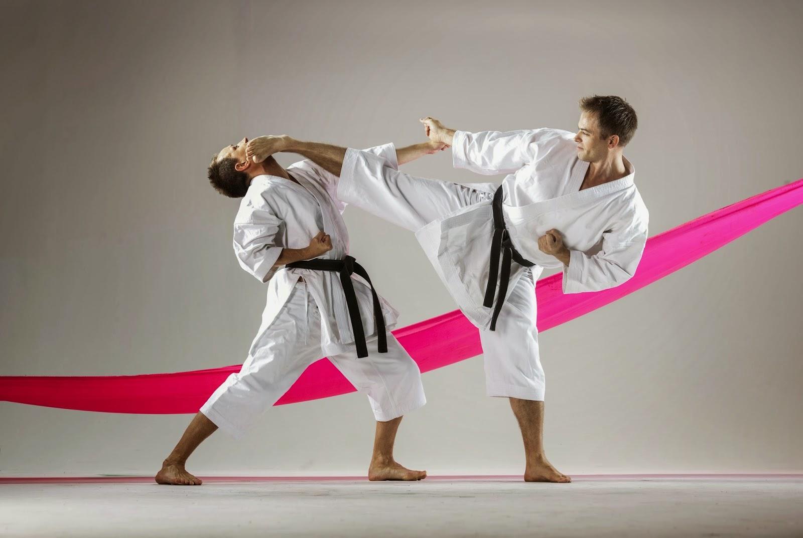 diferencias entre artes marciales y deportes de combate