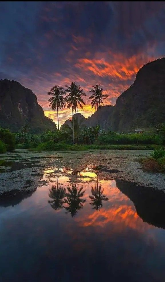 Appreciate The Beauty Of Nature With Landscape Photography
