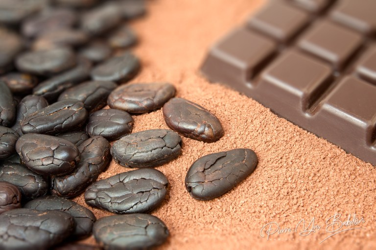 Fèves de cacao de Madagascar et chocolat