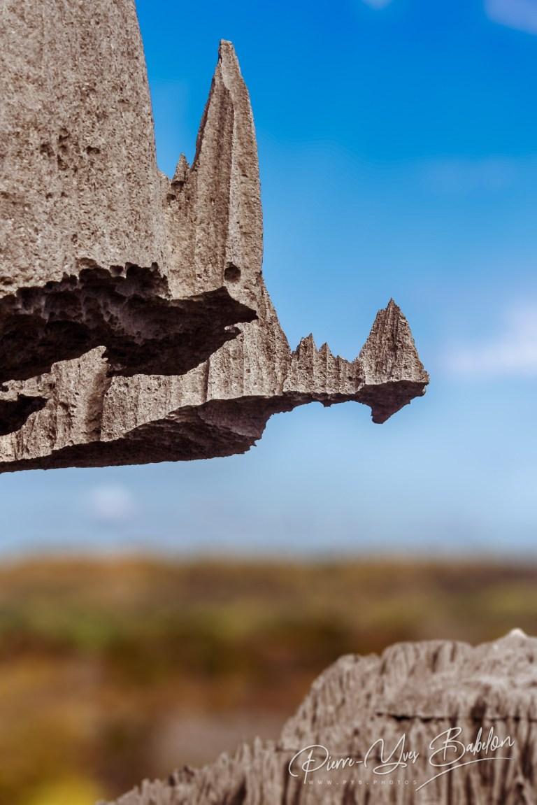 Les grands Tsingy de Bemaraha