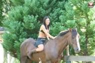 monica mattos suck horse