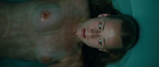Karine Vanasse nue Switch 06