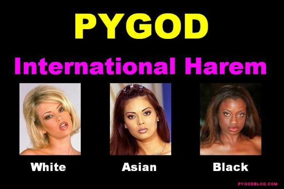 PYGOD International Harem
