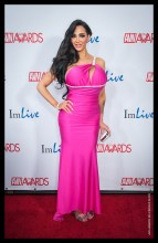 Amy Anderssen AVN Awards