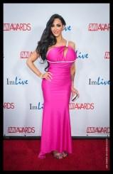 Amy Anderssen AVN Awards