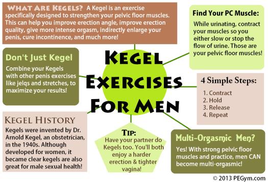 Kegel Infographics