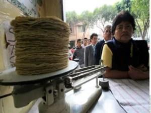 como empezar un negocio de tortilleria