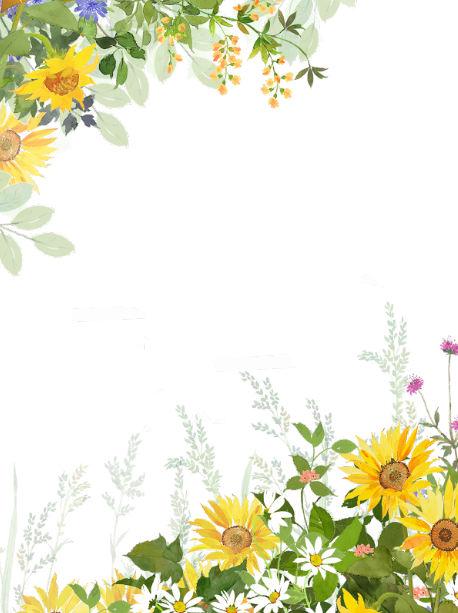 ボタニカルな夏の花と蝶のイラストフレーム枠縦バージョン