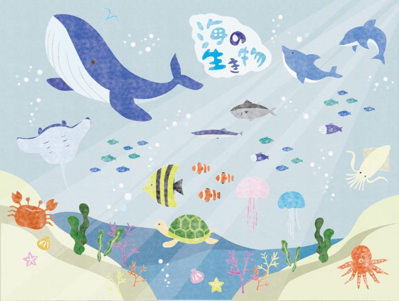 水彩風海の生き物のイラスト素材( クジラ、イルカ、亀、貝、クラゲ、ワカメ、サンゴ、カクレクマノミ、サバ、蟹、タコ、イカ、サンマ、エイ)