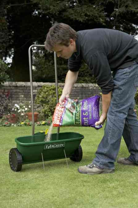 EverGreen Easy Spreader Plus Review