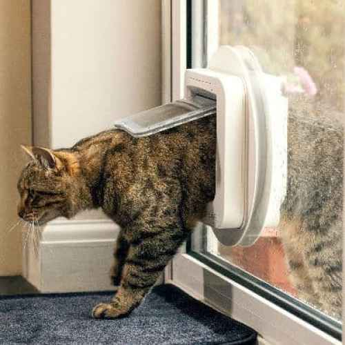 Sureflap microchip cat flap review