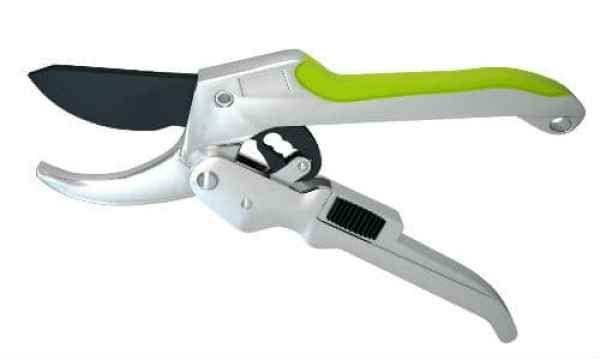 Best secateurs for gardeners with  arthritis or weak hands