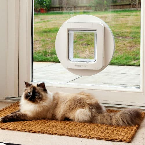 Sureflap microchip pet flap - suitable for large cats
