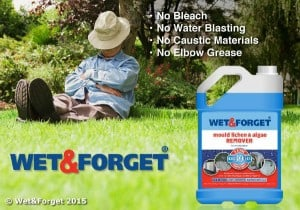 Wet & Forget - Moss Mould Lichen & Algae Remover Review