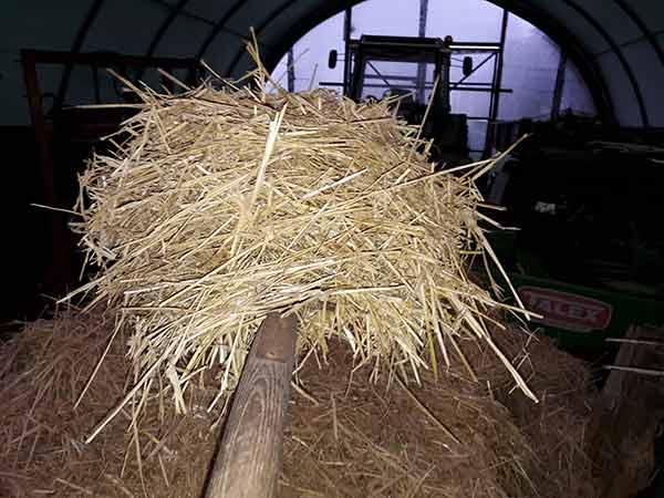 Auf einer Mistgabel in einer Scheune mit Traktor im Hintergrund liegt ein Haufen Stroh.