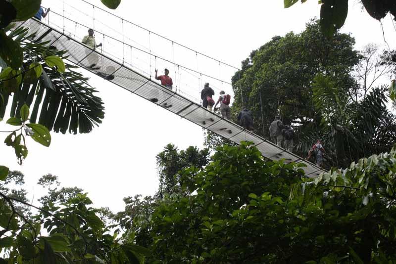 Hängebrücken über dem Urwald von Arenal.