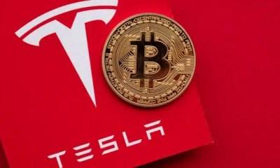 Hombre compra Bitcoin y Tesla usando ayuda de emergencia y termina en la cárcel
