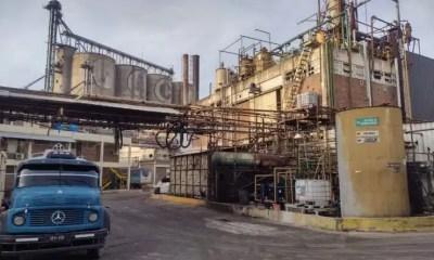 Foto 9. Instalaciones de la Aceitera La Matanza.
