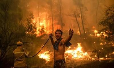 Incendios asolan la isla griega pero pierden fuerza en Turquía