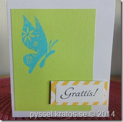 litet kort med fjäril