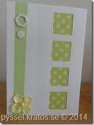 grönt spillbitskort