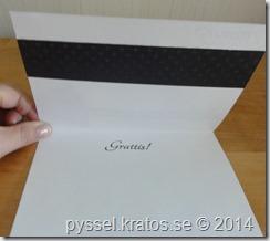 insida2 spillbitskort