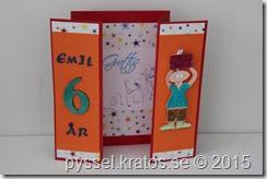 nr83_grattis_emil